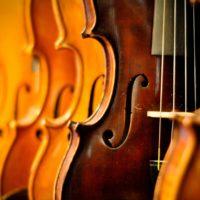 Cuerdas para Orquestas